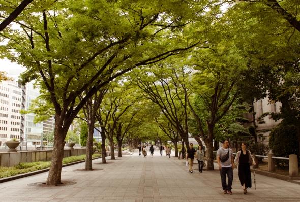 The shady walking path towards Nakanoshima Library