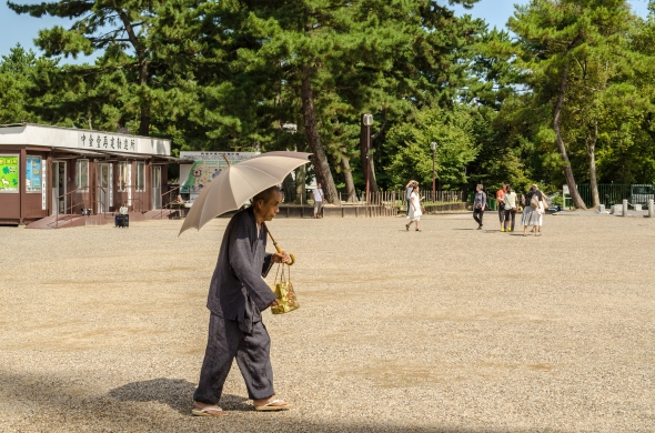 A monk's casual stroll across the grounds